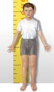 boy-height